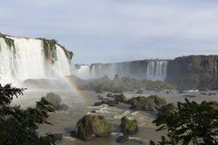 Iguassu faller nationalparken Royaltyfri Bild