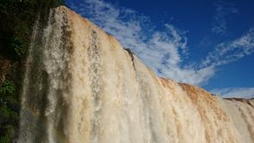 Iguassu Falls. Beside the falls Royalty Free Stock Photos