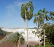 Iguassu Falls Royalty Free Stock Photos