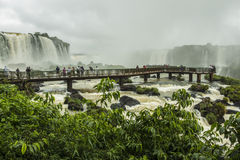 Iguassu Falls - Iguassu National Park Royalty Free Stock Image