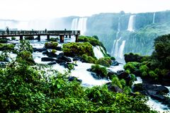 Iguassu Falls, the largest series of waterfalls of the world, view from Brazilian side Royalty Free Stock Image