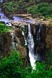 Iguassu (Iguazu ; Automnes d'Iguaçu) - grandes cascades à écriture ligne par ligne Photos libres de droits