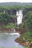 Iguassu (Iguazu; Cadute di Iguaçu) - grandi cascate Fotografie Stock Libere da Diritti