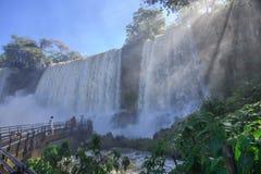 Iguassu National Park Royalty Free Stock Images