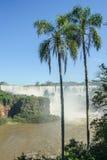 Iguassu National Park Royalty Free Stock Photos