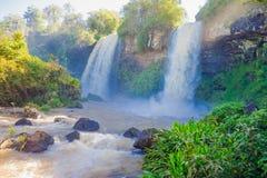 Iguassu National Park Stock Photo