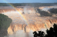 Iguassu National Park Stock Photography