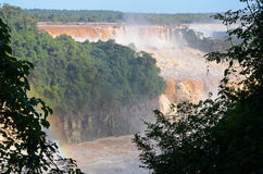Iguassu National Park Royalty Free Stock Photos