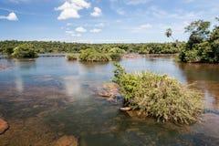 Iguassu River Argentina and Brazil Royalty Free Stock Image