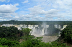 Iguassu vattenfall i djungel Arkivfoton