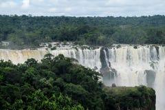 Iguassu vattenfall i djungel Arkivfoto