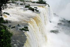 Iguassu waterfall Stock Image