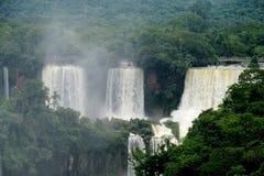 Iguassu waterfall in the jungle Stock Image