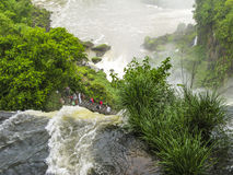 Iguassu waterfall in south america tropical jungle Royalty Free Stock Photos