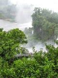 Iguassu waterfall in south america tropical jungle Stock Image