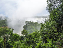 Iguassu waterfall in south america tropical jungle Stock Images