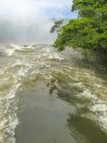 Iguassu waterfall in south america tropical jungle Stock Photography