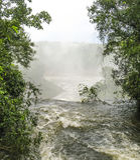 Iguassu waterfall in south america tropical jungle Stock Photos