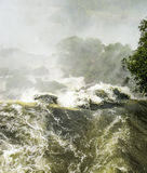 Iguassu waterfall in south america tropical jungle Royalty Free Stock Photo