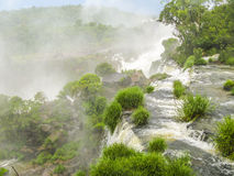 Iguassu waterfall in south america tropical jungle Royalty Free Stock Photography
