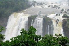Iguassu waterfalls Stock Image