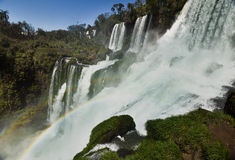 Iguasu Falls, Argentina Brazil. MW - A rainbow forms in the spray from the Iguasu Falls Royalty Free Stock Image