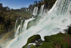 Iguasu nedgångar, Argentina Brasilien Royaltyfri Bild