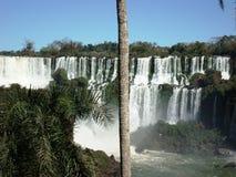 Iguazú spadki Zdjęcie Royalty Free