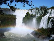 Iguazú Falls 4. View of the Iguazú falls in a sunny day with an unusual caudal of the river and its rich vegetation Royalty Free Stock Photo
