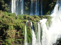 Iguazú Falls. View of the Iguazú falls in a sunny day with an unusual caudal of the river and its rich vegetation stock photography