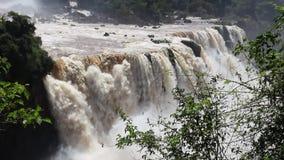 Iguazu stock footage