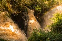 Iguazu Foto de archivo