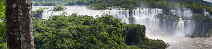 Iguazu, Argentina, South America Stock Photos