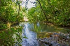IGUAZU, BRASIL - 14 DE MAIO DE 2016: rio pequeno agradável que flui no meio da floresta perto das cachoeiras do iguazu Imagens de Stock