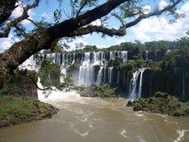 iguazu för 2 falls Arkivfoton