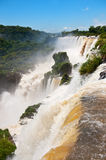 Iguazu falls. Stock Photography