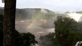 Iguazu Falls clips vidéos