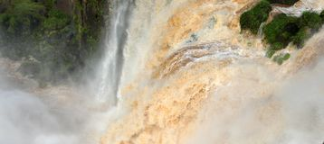 Iguazu Falls, in Argentina Royalty Free Stock Photo