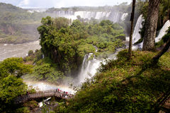 Iguazu Falls, Argentina. The Iguazu Falls at the border between Brazil and Argentina royalty free stock image