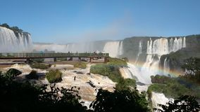 Iguazu Falls in Argentina Misiones Province. With more than 275 waterfalls stock video