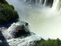 Iguazu Falls, Argentina - one of the World`s Wonders stock photo