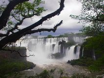 Iguazu Falls, Argentine Image stock