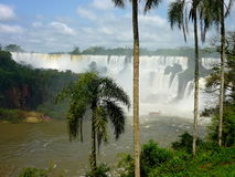 Iguazu falls. Beautifoul argentina and brasil falls Stock Image