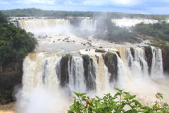 Iguazu Falls, Brazil, Argentina, Paraguay. The breathtaking Iguazu Falls on the boarders of Brazil, Argentina and Paraguay. The Brazilian side Stock Photo