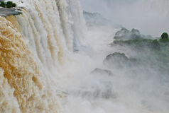 Iguazu Falls in Brazil. The famous landmark waterfalls National Park Foz do Iguaçu in Brazil Stock Photos