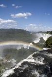 Iguazu Falls de l'Argentine Photographie stock libre de droits
