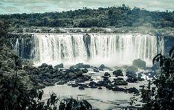 Iguazu Falls, el Brasil foto de archivo libre de regalías