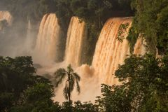 Iguazu Falls em Argentina foto de stock royalty free
