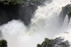 Iguazu Falls en la Argentina Fotografía de archivo