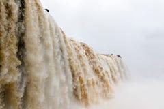 Iguazu falls higher waterfall veiw from brazil. National park Stock Images